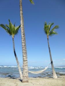 癒しの島ハワイ島での休日