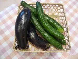 幸せな野菜の収穫・・・今年は順調に育っています!