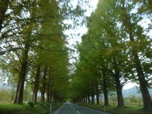 魅力いっぱいの滋賀県ですが・・・